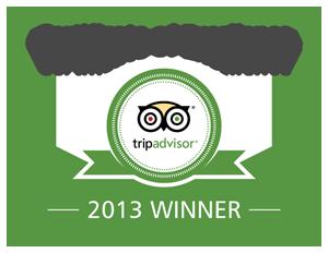 Excellence-Badge_2013_en-site