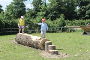 Summer Farm Trail Quiz @ Hall Farm | United Kingdom